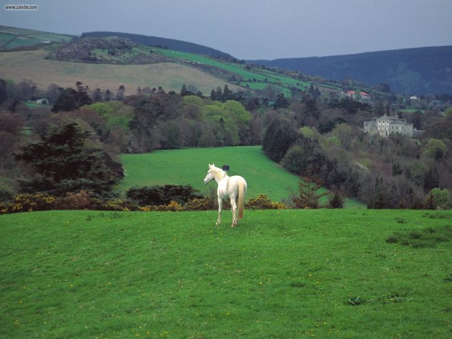 Ireland-Countryside-9-830x450