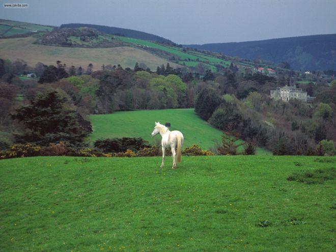 Ireland-Countryside-9-830x450