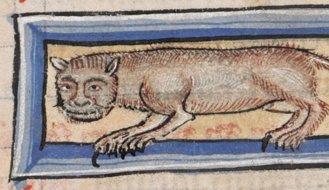 medieval-ugly-cat12