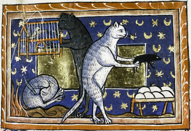 medieval-ugly-cat14