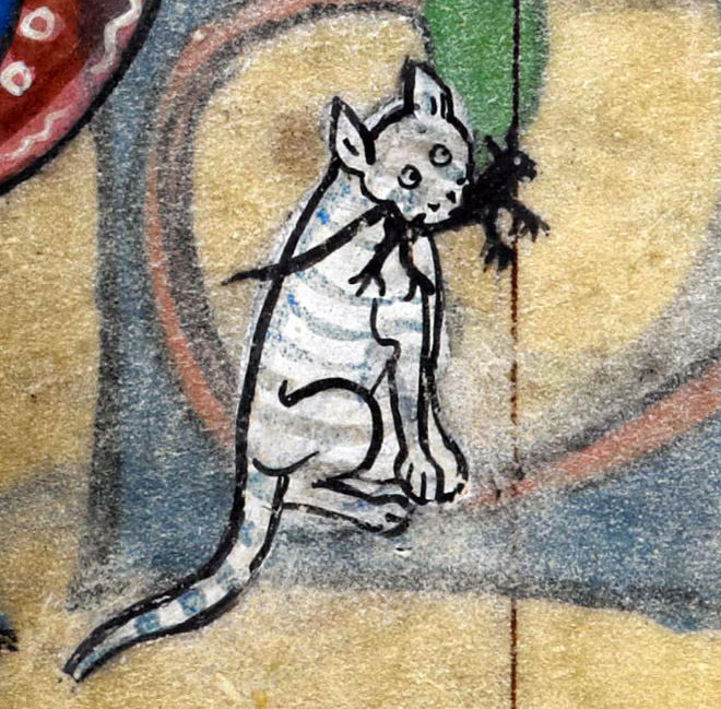 medieval-ugly-cat18